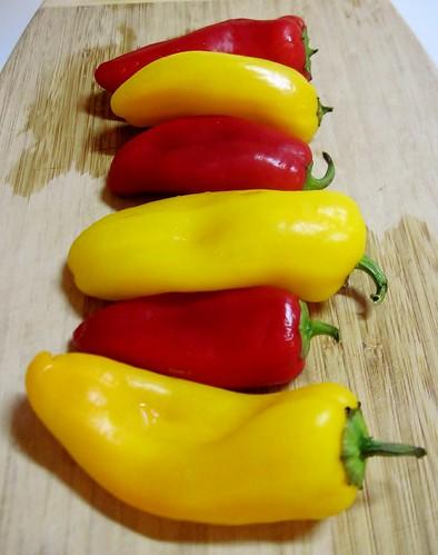 Mini sweet peppers