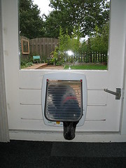 Pet door - photo courtesy of M.M.Minderhoud at Wikimedia Commons