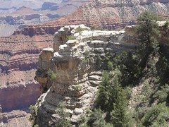 USA_Day06-Grand_Canyon_Stop2_18