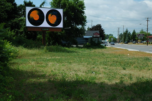 Albany Billboard Art Project 2012 - Julia Cocuzza (5)