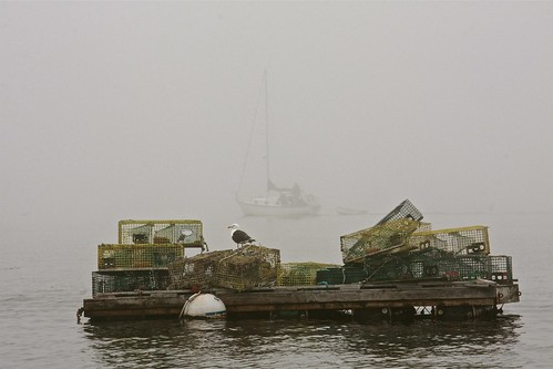 Sailing Through Thick Fog 06