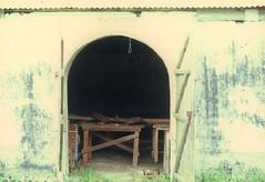 Hickey-1972-DG Plantation-950-439801-R1-80-80_138