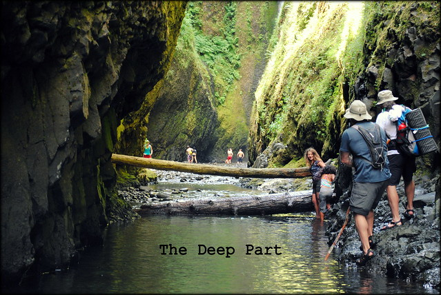 """The Deep Part"" just before the waterfall at Oneonta Gorge"