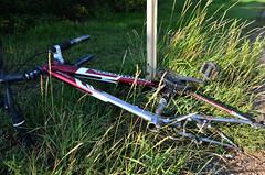 Abandoned Edmonton Bicycle