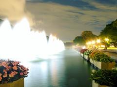 上野恩賜公園 噴水池