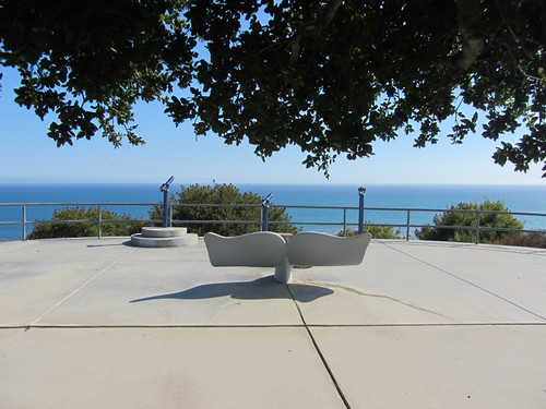 whale tale bench at bluffs park