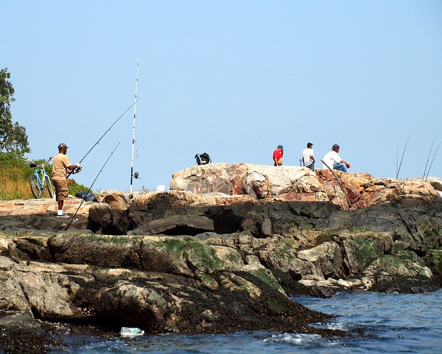 Fishing on twin island pelham bay park new york city for Fishing in new york city