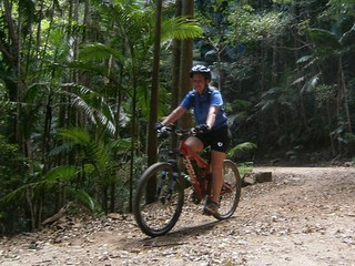 Becca - Joyners Ridge Road Rainforest