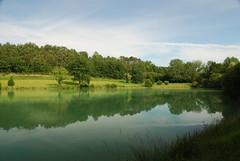 Les eaux vertes et ses compagnes
