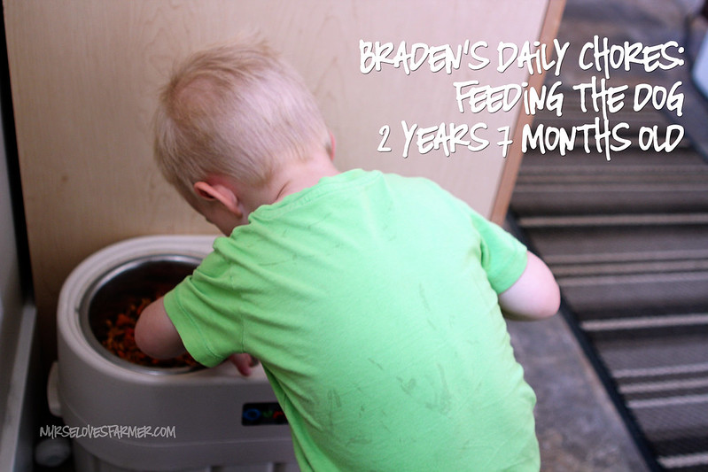 Braden's Chore