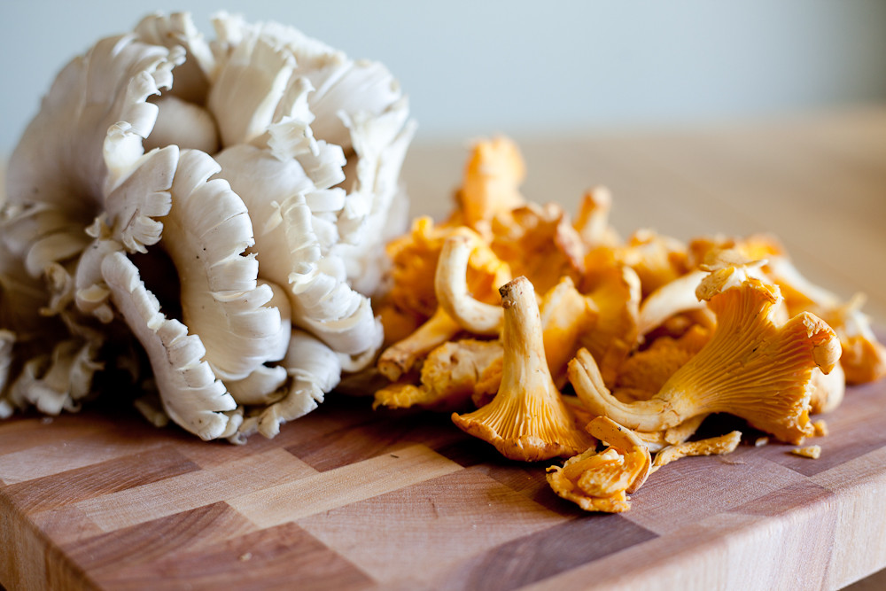 Oyster and Chanterelle Mushrooms