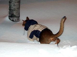 gunhee-snow1