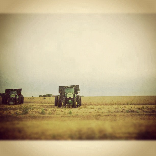 In the Fields #squaready #snapseed #johndeere #tractor #harvest #perfectfallday