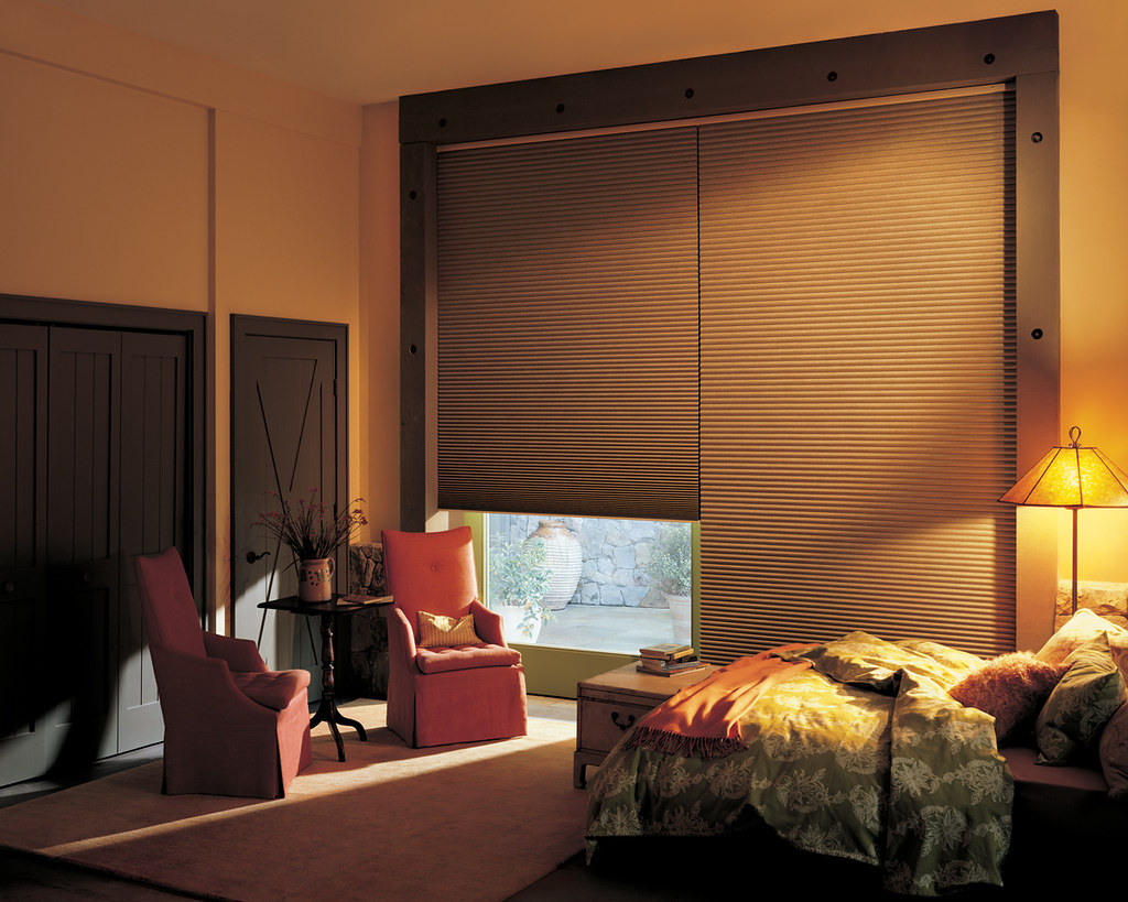 Hunter Douglas Duette with Powerrise