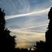 Night sky, Camden Town