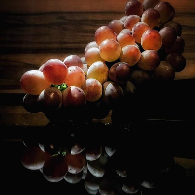 Japanese King Delaware Grapes  #orangemarcus #オレンジマーカス #iam_orangemarcus #food #foodie #foodphotography #食品の写真撮影 #食品撮影 #foodlover #foodstyling #foodpic #iphoneography #iphonegraphy #iphonephotography #shotoniphone #madewithiphone #iphonephoto #iphonepic #