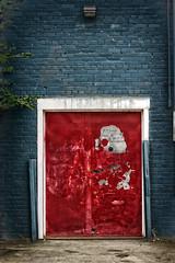 Red Door In Alley