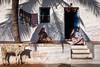Home. Badami, India