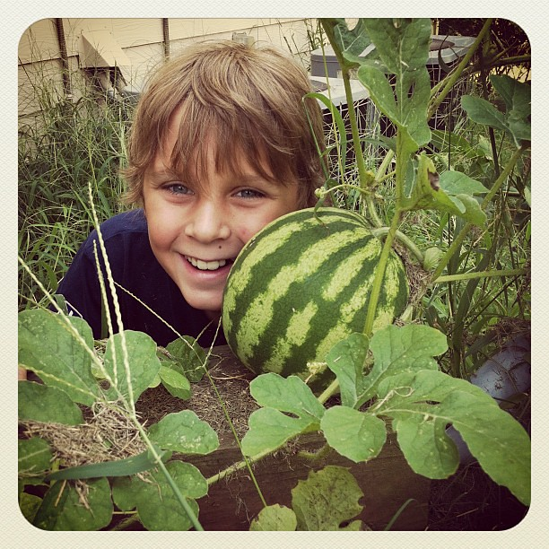 My little gardener's 1st watermelon!