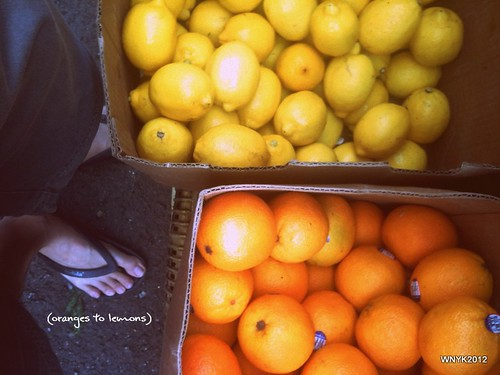 oranges to lemons by williamnyk
