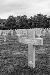 German war cemetery Ysselsteyn