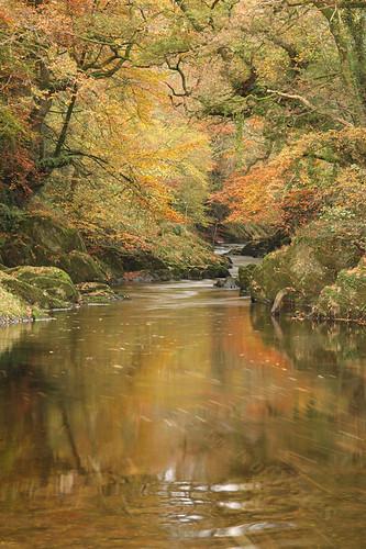 carmarthenshire rivertowy llandovery cilycwm