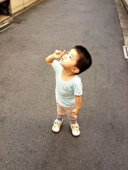 朝散歩とらちゃん (2012/8/31)