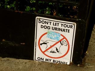 don't urinate