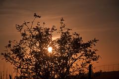 September Sunset 2012