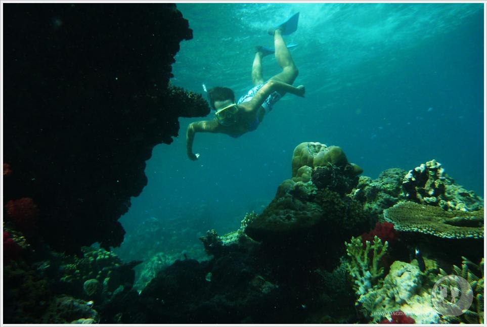 2012 07 23_Magda i Tomek Dookola Swiata_Fiji_P1040176