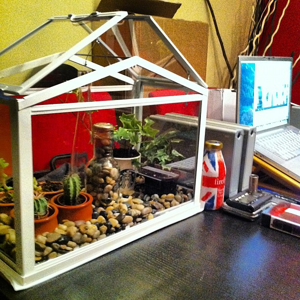 Mini invernadero ikea decorar tu casa es - Foro decoracion ikea ...