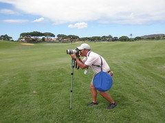 Hawaii Championshio Pro-Am 045