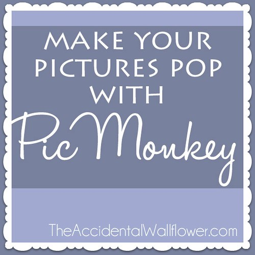 pic-monkey-tutorial