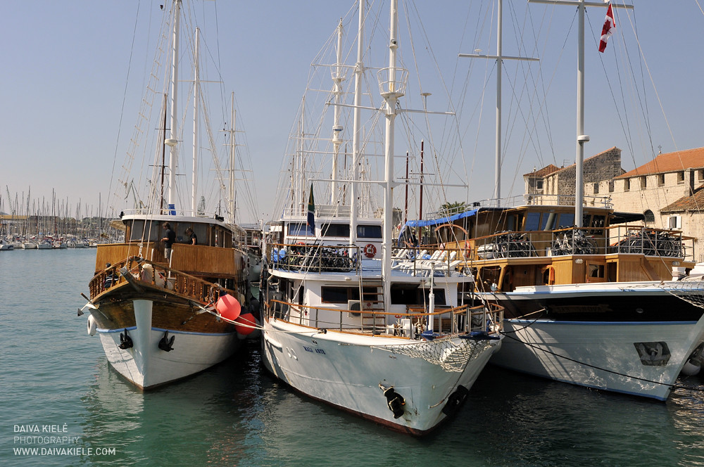 Trogiras
