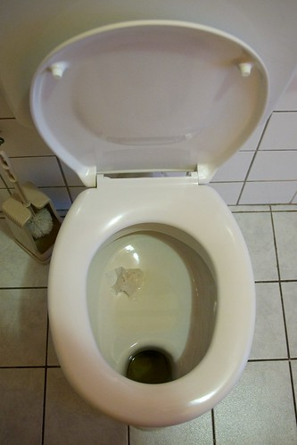 Austrian Toilet