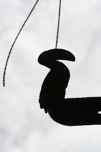 John Street Birds