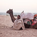 Sand Dunes, Thar Desert, Rajasthan State, India.