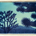 Wee Thump Joshua Tree Wilderness, NV by moominsean