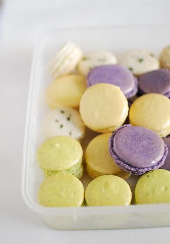 ... -Lime, Yellow: Meyer Lemon, Purple: Lavender, White: Lemon-Verbena