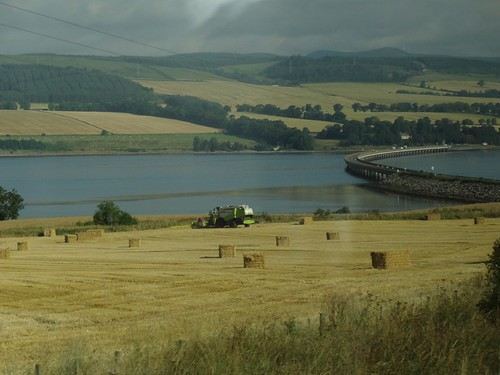 Fields around the Cromarty Firth