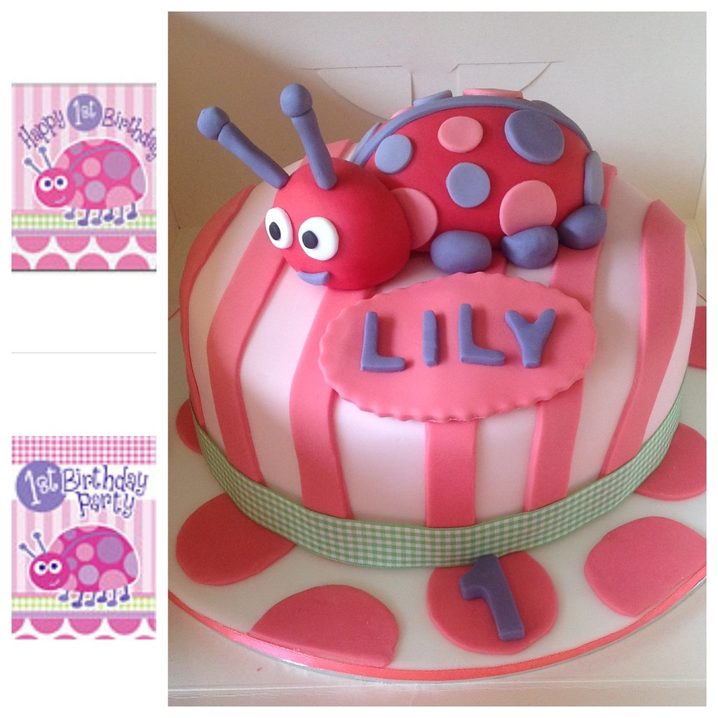 Pink Purple Lady Bug 1st Birthday Cake A Photo On Flickriver