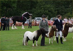 Little And Large - Rosedale Show