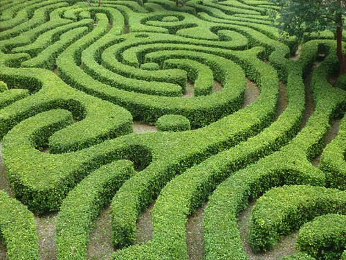 How Do I Get Out Of The Maze?