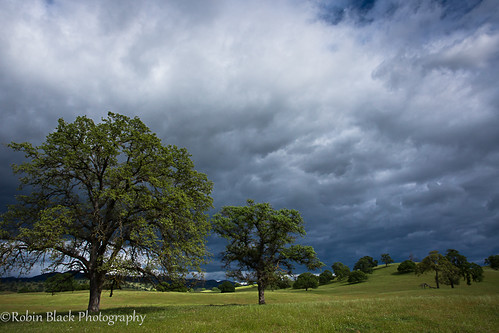 california sky cloud foothills green classic spring skies ngc stormy sierra hills explore fresno oaks drama oaktree rolling naturesbest nationalgeographic chaparral explored outdoorphotographer canon5dmarkii robinblackphotography