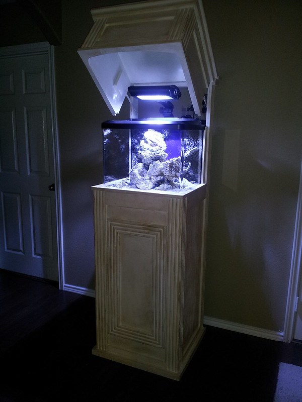 29g Biocube Hqi For Sale