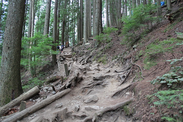 Grouse Grind Trail