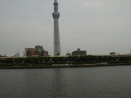 Tokyo Tower, with Zero Yen Houses dotting the riverline.