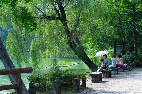 Aguantando el calor en el parque Inokashira