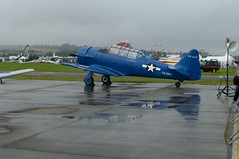 Harvard, Texan,AT 6, At Shoreham