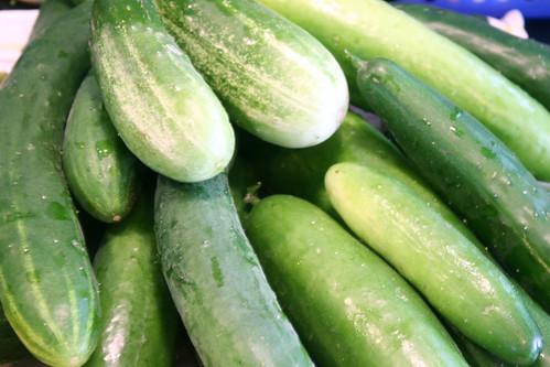 cucumbers 053